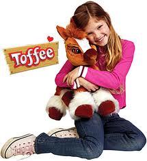 pony toffee